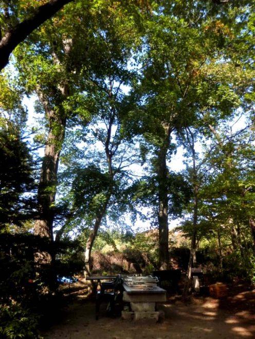 那須高原のぎゃらりー瀧のムーミン谷