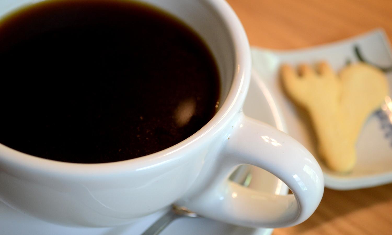 那須フランクリンズカフェの厳選されたコーヒー