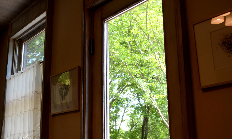 那須フランクリンズカフェの窓からは森の緑が広がる
