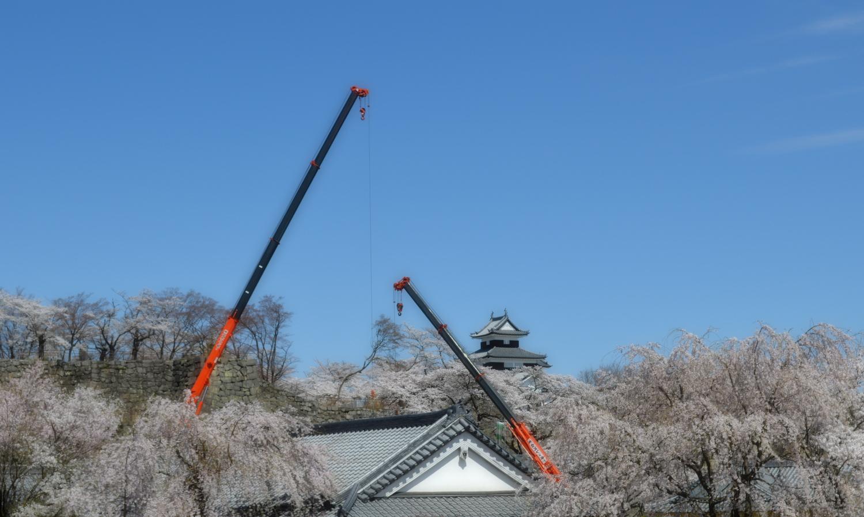 白河市小峰城の桜遠景とクレーン