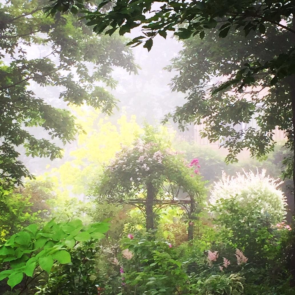mai+Garden1-001