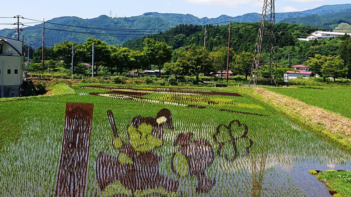 那須塩原関谷の田んぼアート一寸法師