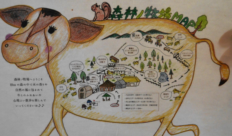 那須森林ノ牧場の園内マップ