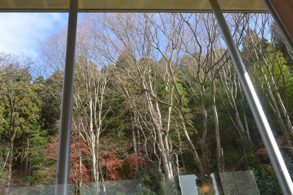 棚倉町のCafe'sBond141の窓から見る景色
