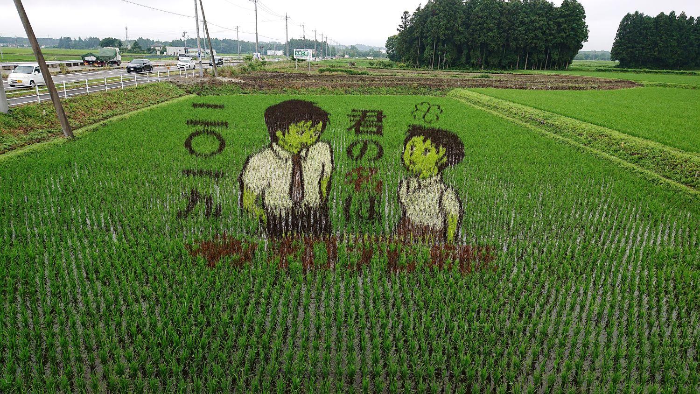 那須塩原第一会場の田んぼアート2