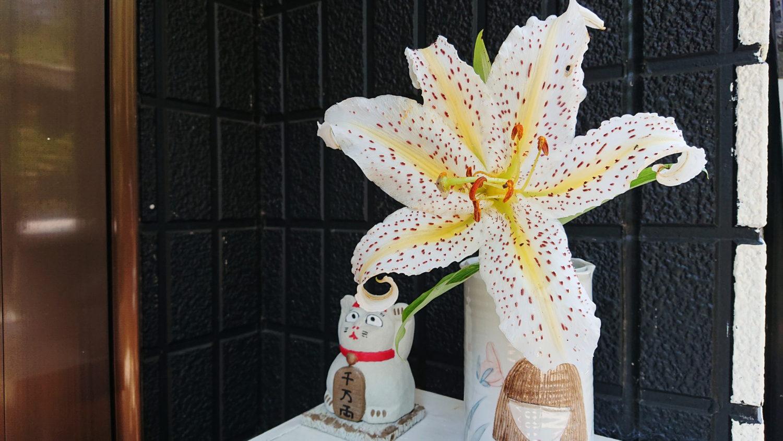 花瓶に生けられた那須高原のヤマユリ